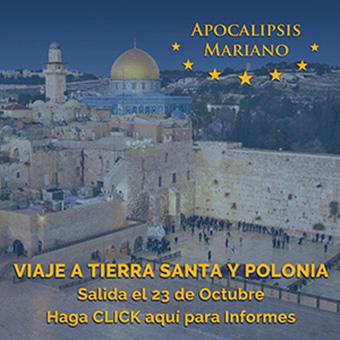 Ver información en AM Viajes